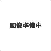 大阪のゴミ屋敷専門業者クリーナーズのスタッフ 高田の写真